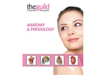 Anatomy & Physiology Certificate Course
