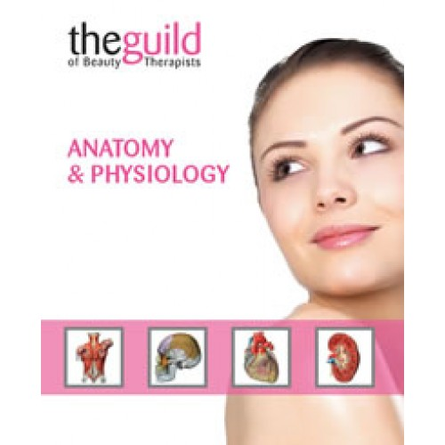 Anatomy & Physiology Certificate Course - Tranquillity Holistic ...